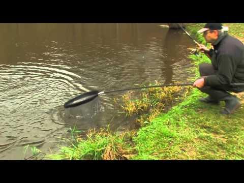 рыбалка в бростах
