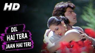 Dil Hai Tera Jaan Hai Teri | Alka Yagnik, Kumar Sanu | Muqaddar 1996 HD Songs | Rohit Kumar, Simran