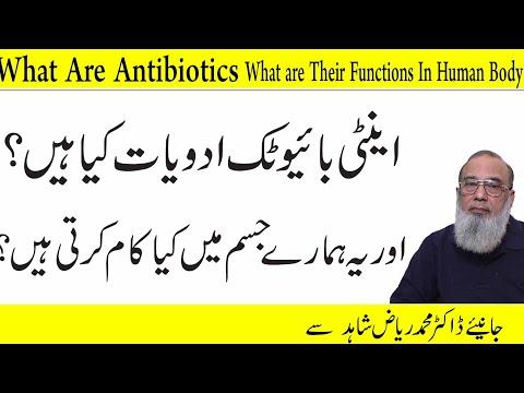 what-are-antibiotics,-the-function-of-antibiotics