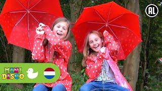 Herfst  Kinderliedjes  IN HET BOS  Peuterliedjes  Kleuterliedjes  Minidisco