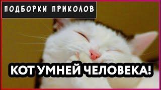 Подборка приколов.Лучшие приколы Приколы 2018!ДО СЛЕЗ