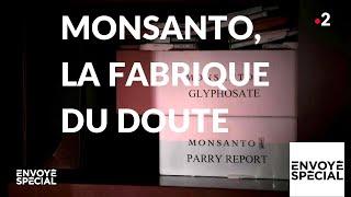 Envoyé spécial. Monsanto, la fabrique du doute - 17 janvier 2019 (France 2)