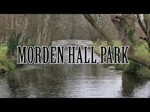 Morden Hall Park - A Great Day Out