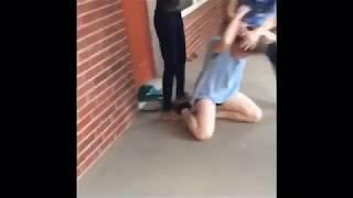 High school fights (no chill)