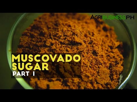 Muscovado sugar processing in the Philippines: Muscovado sugar Part 1 #Agribusiness