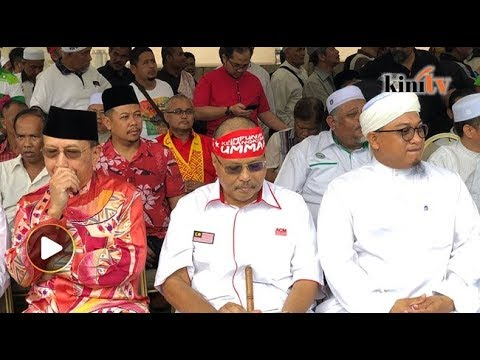 Rais Yatim joins Umno, PAS at Malay-Muslim rights rally