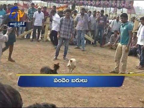 12 Noon | Ghantaravam  | News Headlines | 16th January 2019 | ETV Andhra Pradesh