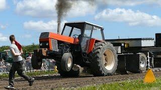 Ursus 1201, C-1201, 1222, 1501 & 1614 | Tractor Pulling Denmark