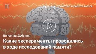 Мозговые центры обучения и памяти — Вячеслав Дубынин