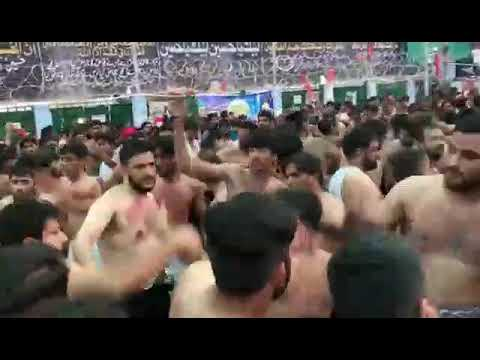 Matami Sangat Qamre Bani Hashim ( QBH ) / Rauza e Lal Shahbaz Qalandar