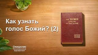 Евангелие фильм «Ожидание» Как узнать голос Божий? (2) (Видеоклип 6/7)