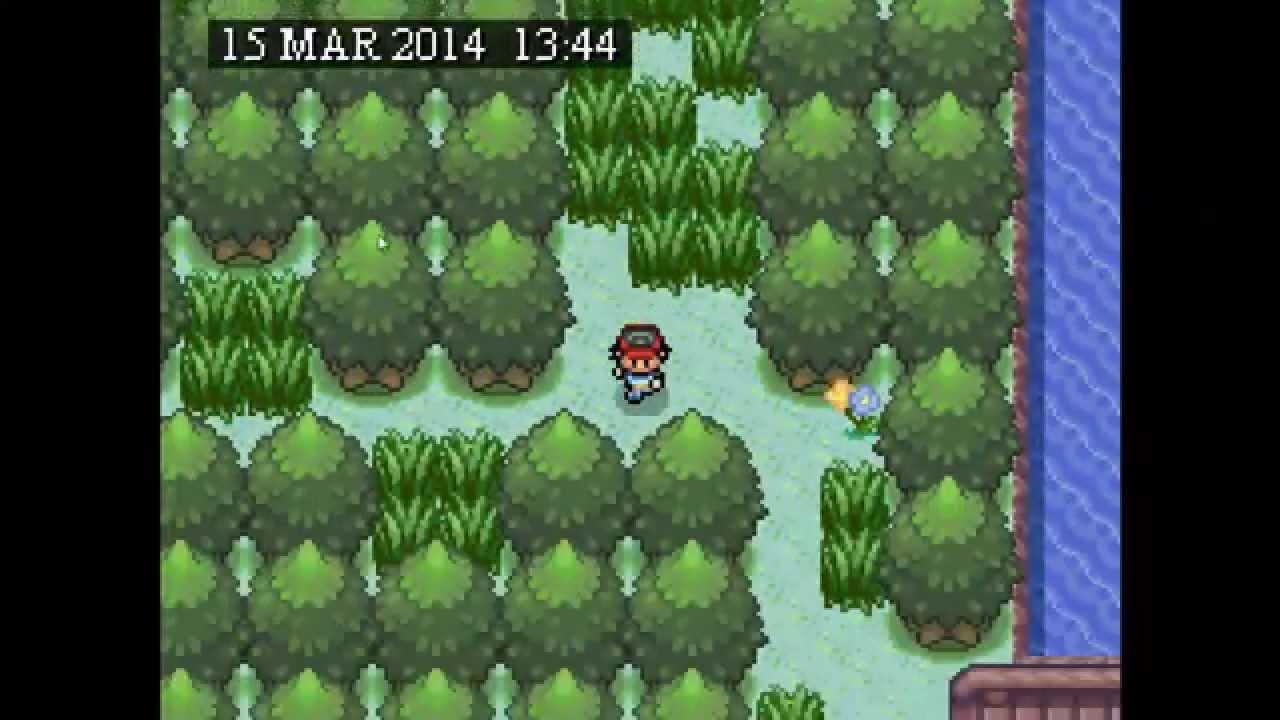 Como atrapar pincir tauros scyther o kangaskhan pokemon for Gimnasio 8 pokemon reloaded