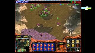 Moondolf s04e12: качественный контент - [Starcraft Brood War]