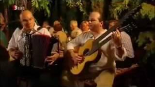 16er Buam über Wienermusik