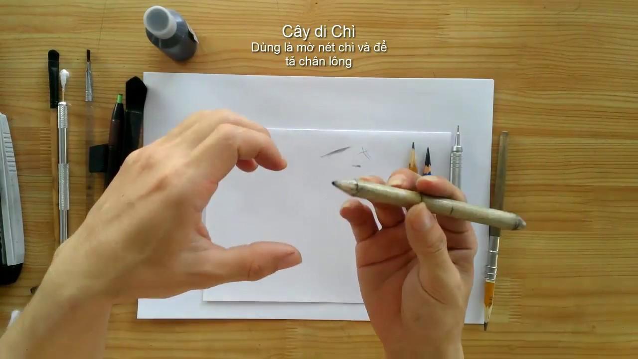 Vẽ Chân Dung – Dụng Cụ Vẽ Chì và Cách Sử Dụng DP Truong