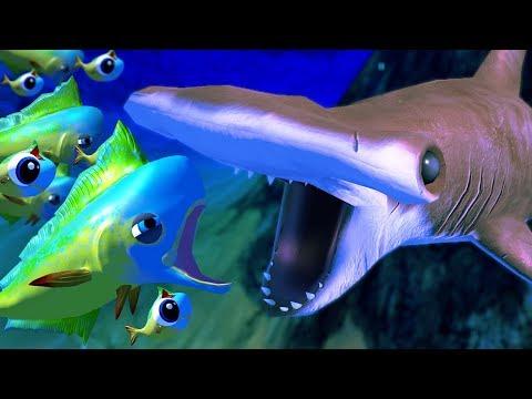 MAHI MAHI Vs HAMMERHEAD SHARK! - Feed And Grow Fish - Part 51 | Pungence