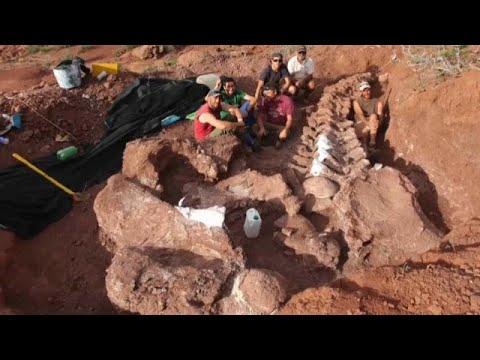 شاهد: اكتشاف بقايا الديناصور الأكبر على الأرض في الأرجنتين…  - نشر قبل 47 دقيقة