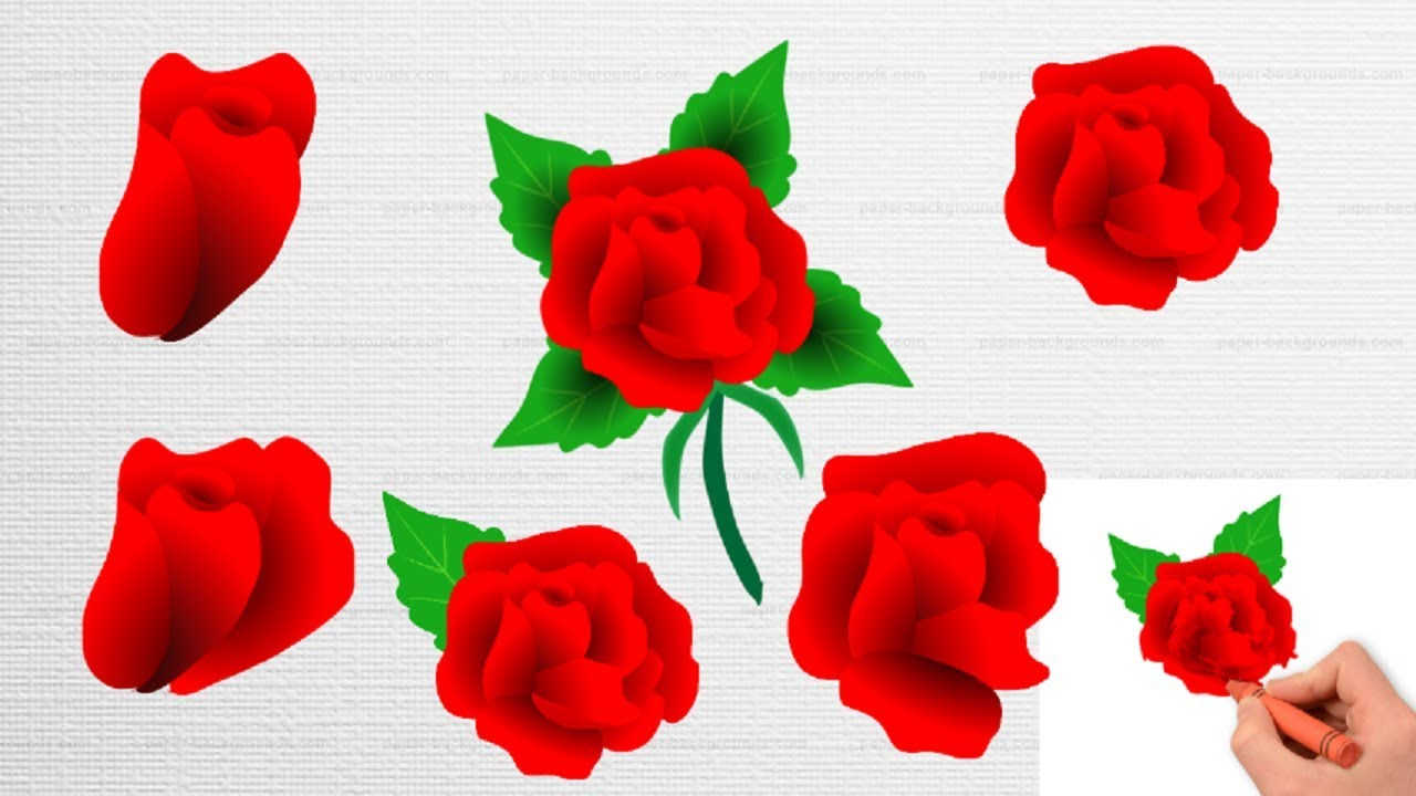 Flowers Color Pages|| Red Rose||Coloring Flower for kids| - YouTube