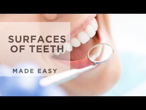 Surfaces of Teeth