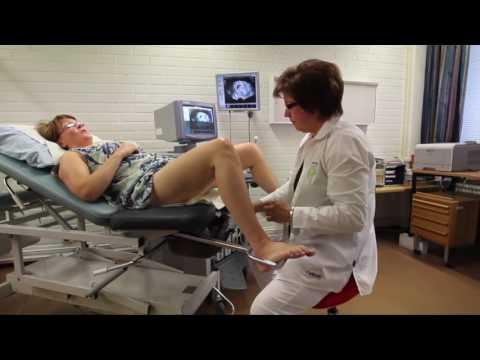 Salli Saddle Chair in Healthcare, Gynecologist | sithealthier.com