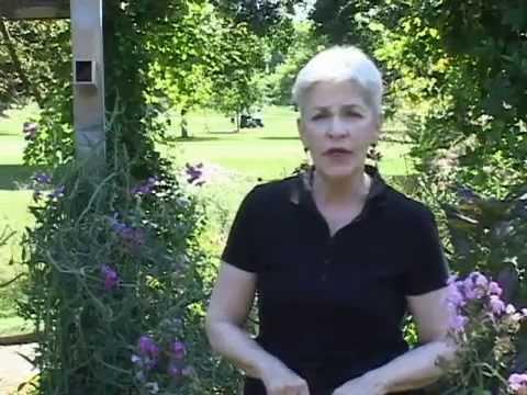 Milkweed to Monarchs with Kay MacNeil