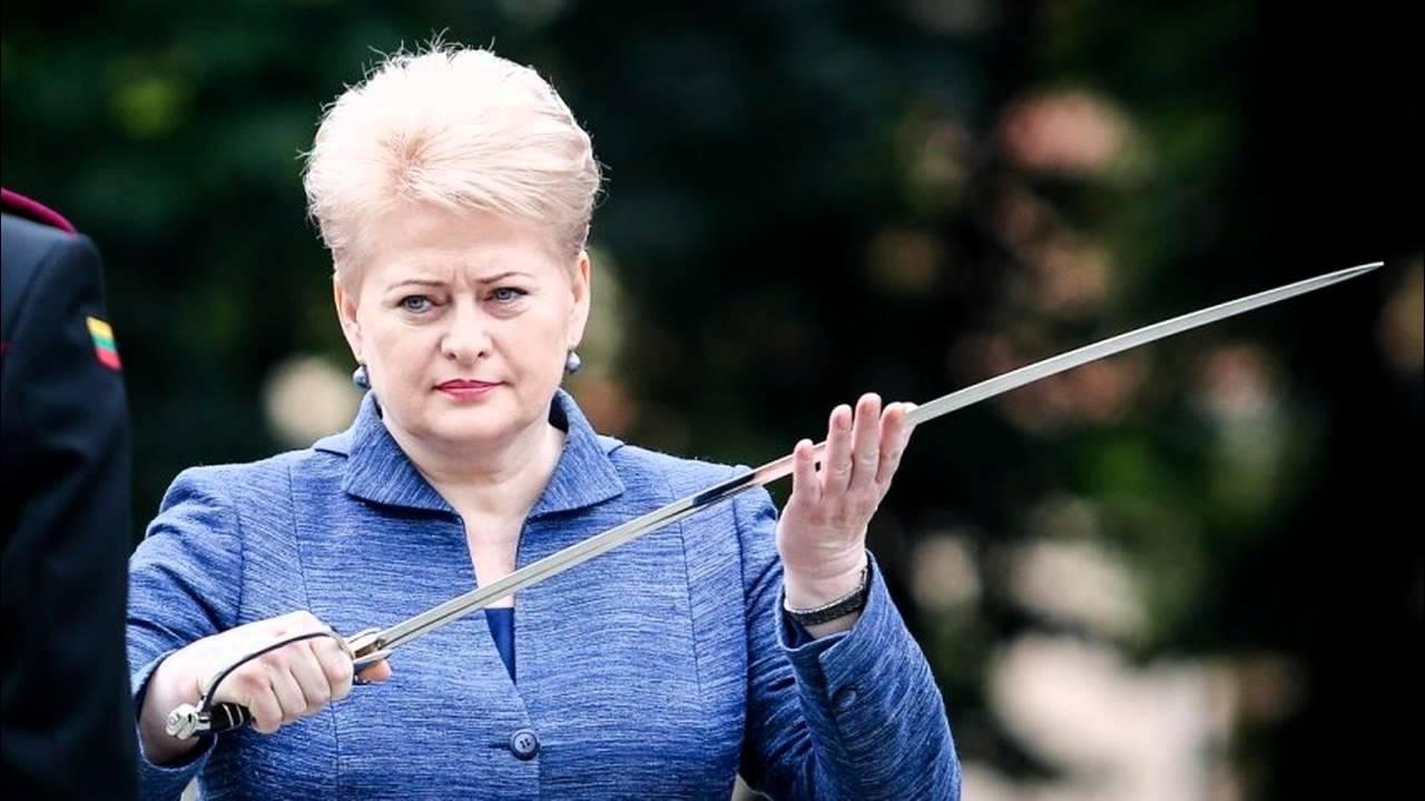 Во время визита Грибаускайте состоится заседание Совета Президентов и украинско-литовский экономический форум - Цензор.НЕТ 6954