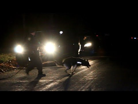 HN VIDEO: 20-year-old female stabbing suspect tries to run