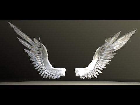 Bird Angel Wings Test - YouTube