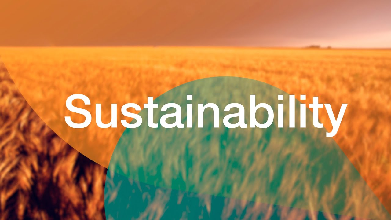 case 2 beginning on page 314 walmart the future is sustainability Over the coming months, we're making some substantial updates to walmartcom, overhauling familiar features and introducing new ones.