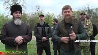 В лесах Чечни увеличилась популяция пятнистых оленей