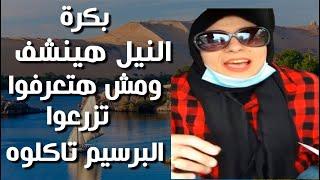 امرأة اخوانية فى امريكا بسعادة تشمت فى المصريين بسبب ازمة سد النهضة