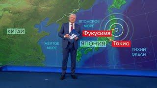 После землетрясения в Японии была объявлена угроза цунами.