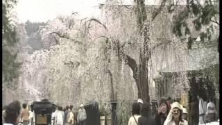 Video Beautiful Landscapes of Japan -- Season 1 Episode 13 download MP3, 3GP, MP4, WEBM, AVI, FLV Juli 2018