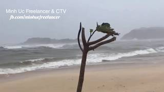 [Bão số 6] Quy Nhơn mưa to, sóng lớn, gió giật mạnh lúc 15h ngày 10/11/2019