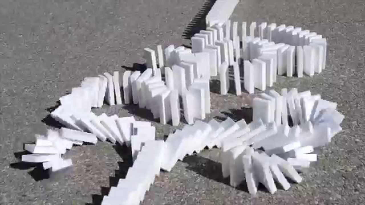 an opinion that a bad day is like a domino effect Since the day they were born, college-bound women have been groomed for a life at the office rather than for a life at home  way back in 2002 i wrote a book about the domino effect that occurs .