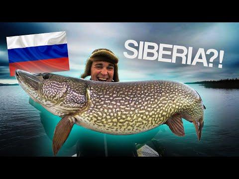 Exploring Pike Fishing In SIBERIA 🇷🇺