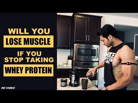 Will You LOSE MUSCLE If You Stop Taking WHEY PROTEIN | Info By Guru Mann