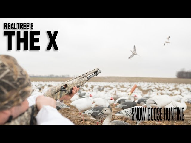 The X: Conservation Snow Goose Season