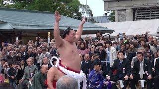 2013.10.23午前10時から、出雲大社拝殿前で横綱白鵬と日馬富士が奉納土...