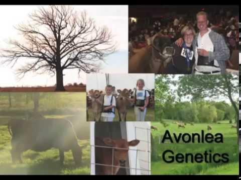 Avonlea Genetics Inc.