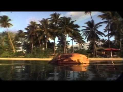 Hard Rock Hotel & Casino | Kimberley Region | Captain Cook Cruises Fiji
