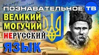 Великий могучий нерусский язык (Познавательное ТВ, Елена Гоголь)