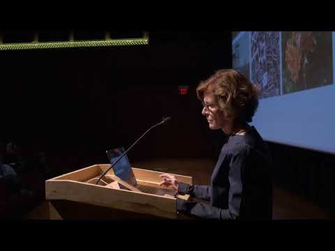 """Jeanne Gang, """"Material World"""", Lecture 2 of 3, 04.17.18"""