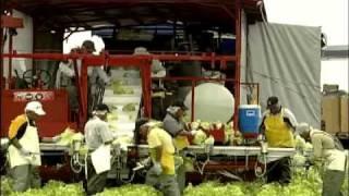 La traçabilité des animaux d'élevage et des aliments au Québec - MAPAQ\ATQ (PARTIE II)