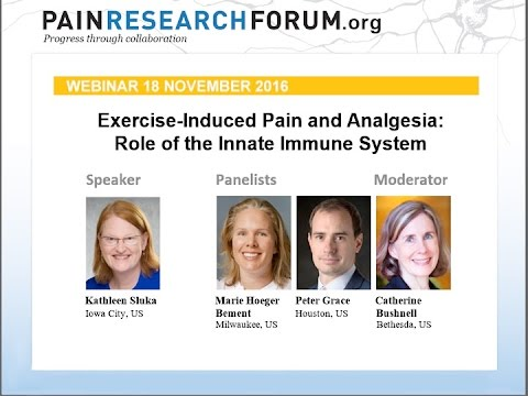 Pain Research Forum Webinar