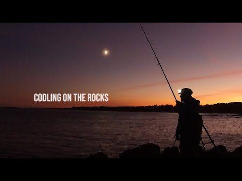 UK Shore Fishing- Cod Fishing From The Rocks