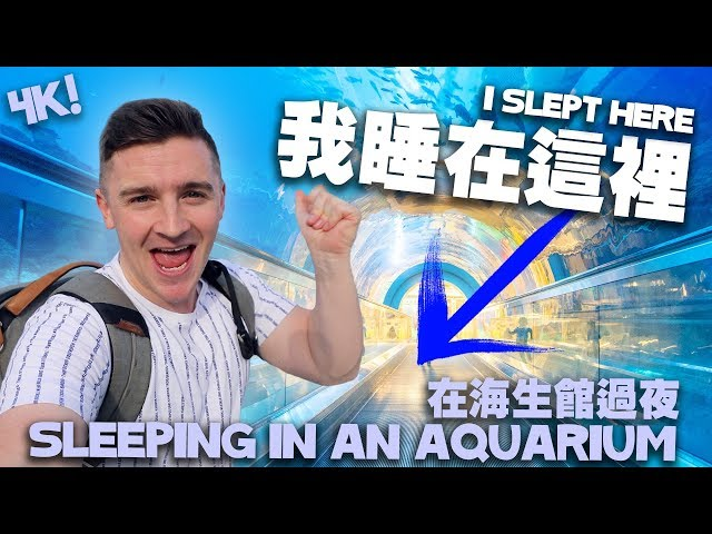 在海生館過夜 - 在台灣必要體驗的活動 Sleeping in an Aquarium (4K) [小貝逛台灣 #202]