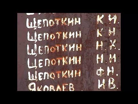 Родина моего отца - деревня Шотова Пинежского района Архангельской области. Домашнее видео 2006 года
