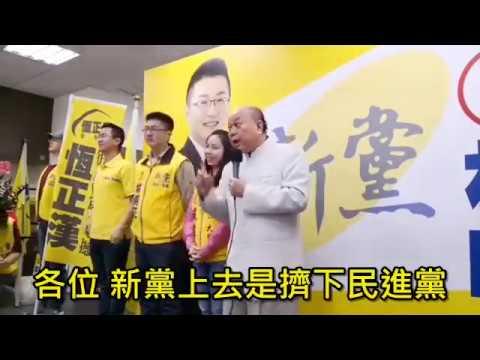 新黨台北市七席全上,民進黨就掉七席!