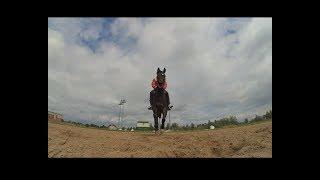 Тренировка на ипподроме #6   раздавил камеру конем